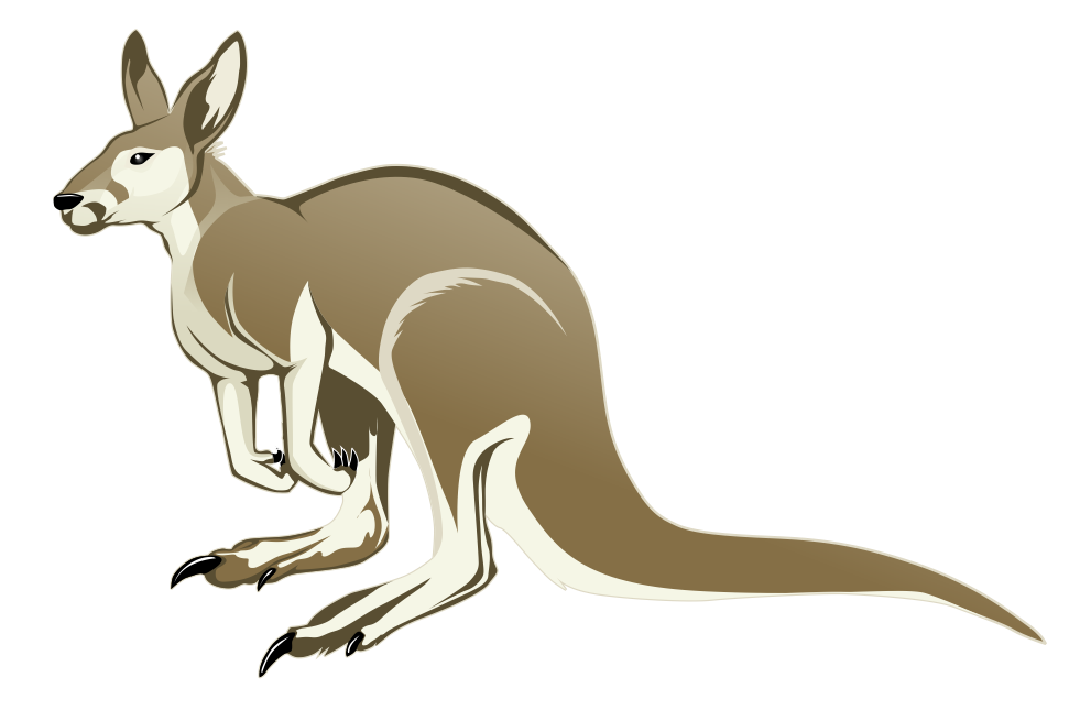 Kangaroo free to use clipart 2