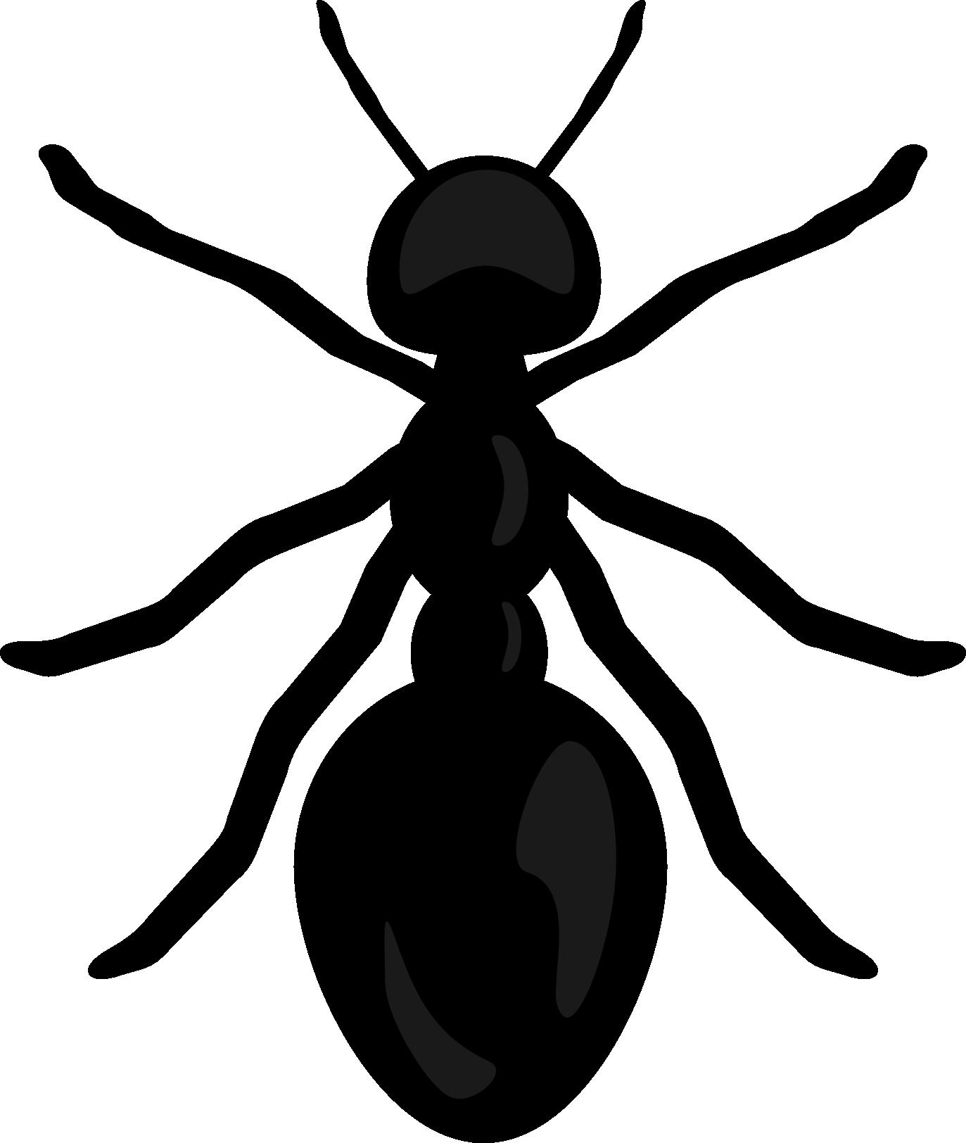 Top ant clip art clipart blog 2