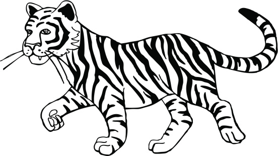 Black and white tiger clipart clip art library