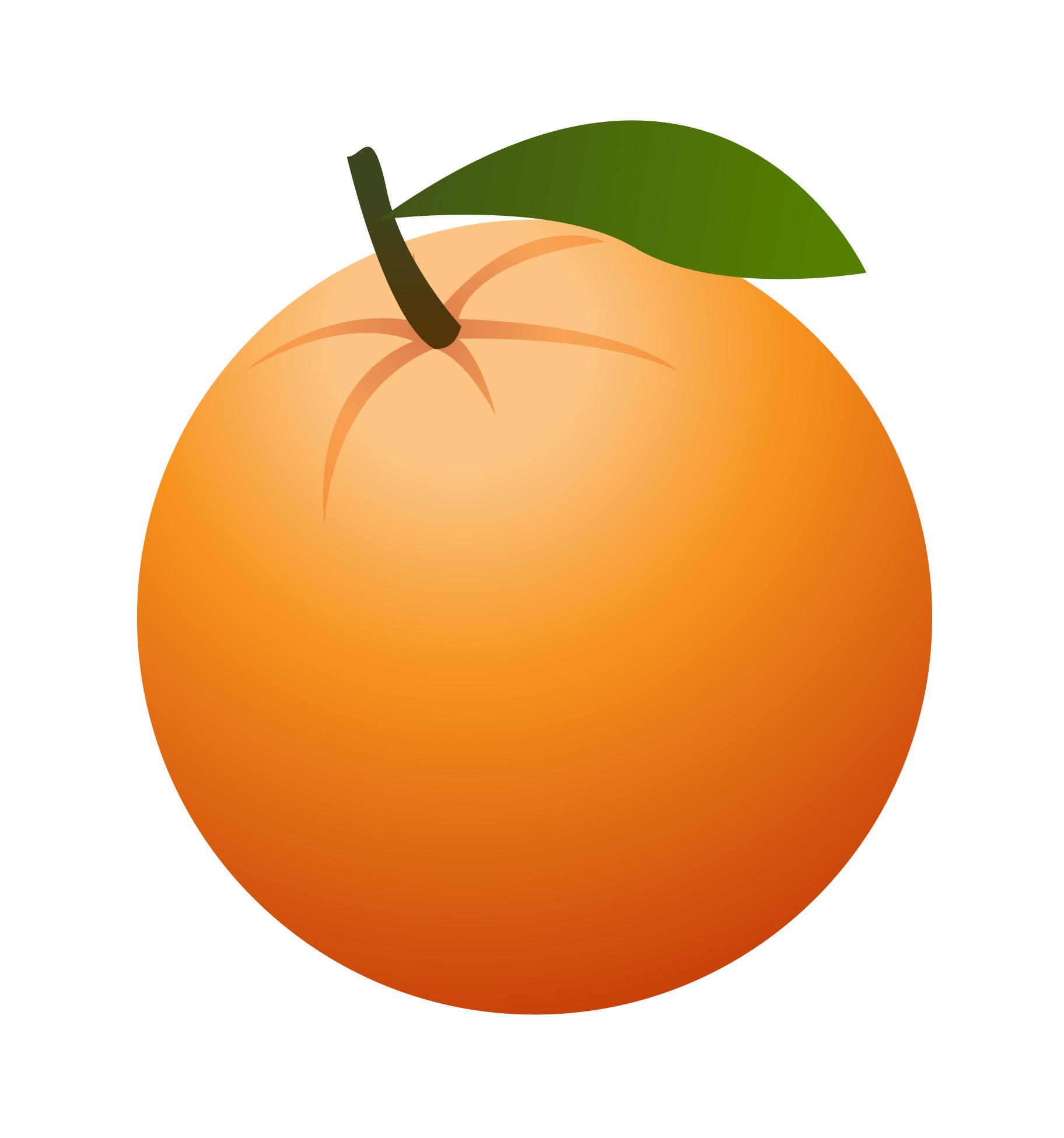 Hd art orange clipart fruit drawing jpg