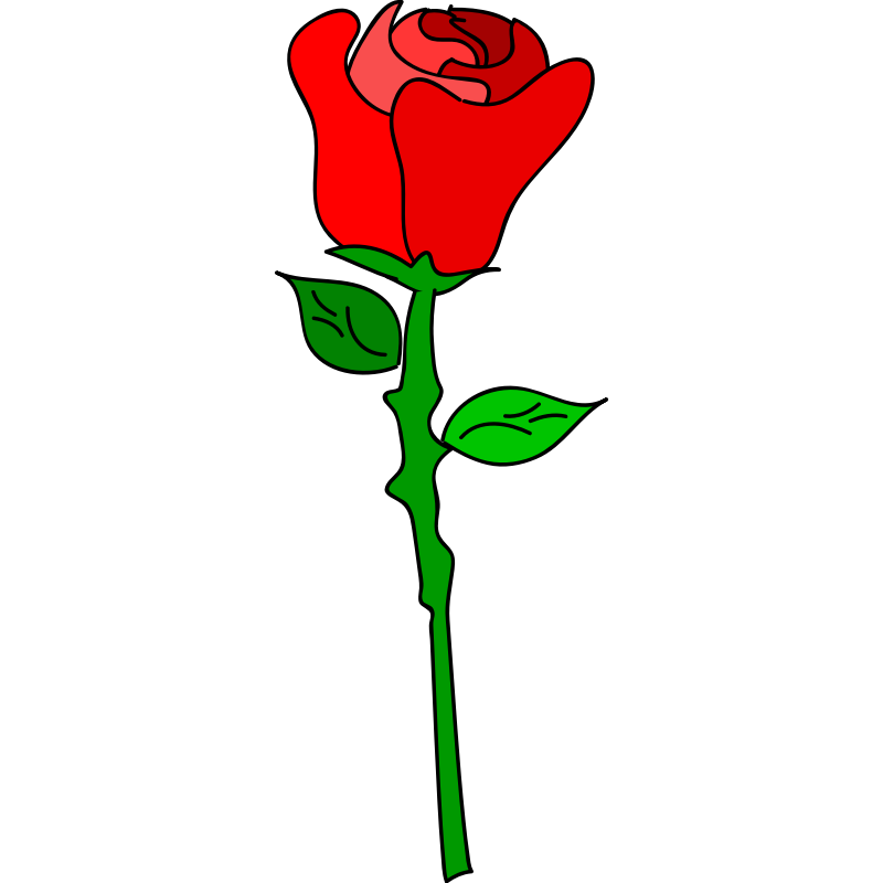 rose cartoon Cartoon rose pictures free download clip art png