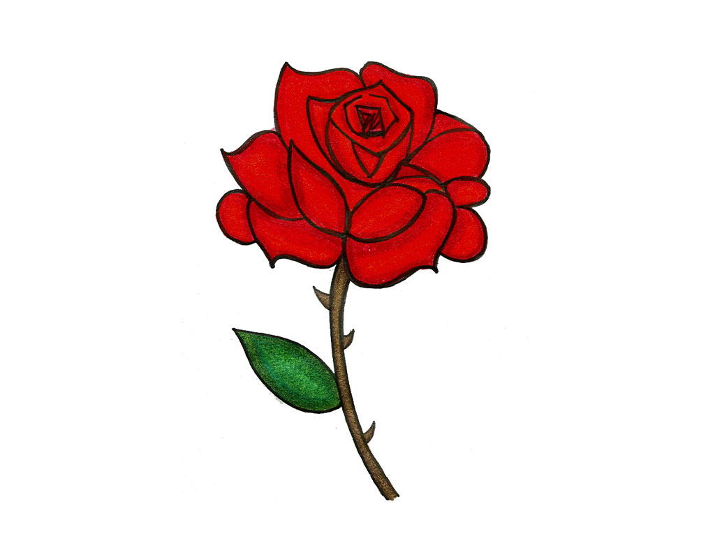 rose cartoon Cartoon rose drawing pictures drawings nocturnal jpg
