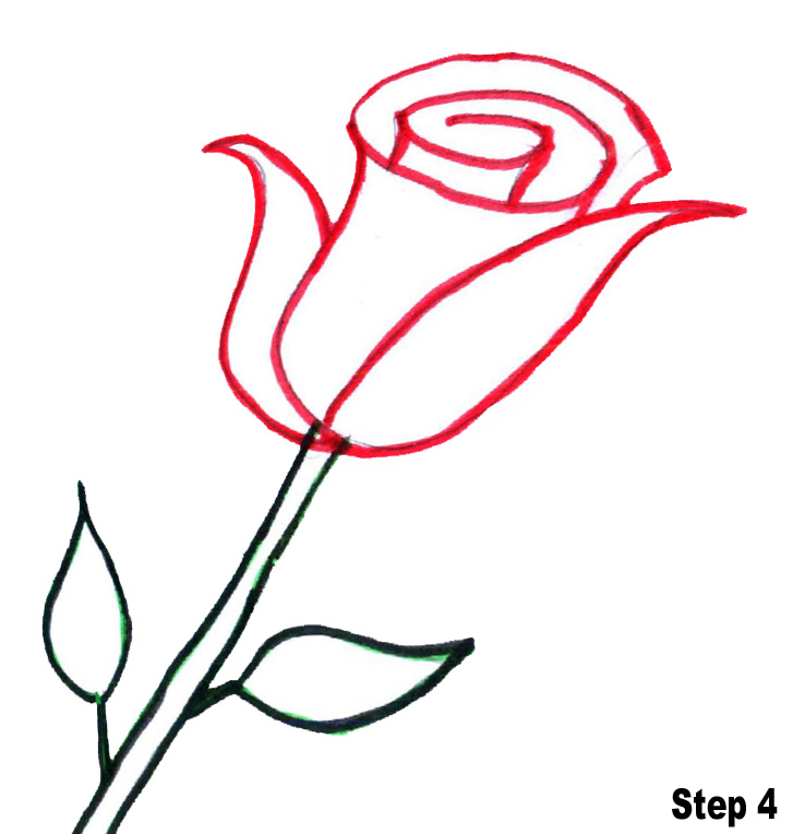 rose cartoon Cartoon sketch of rose drawing jpg