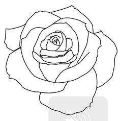Rose outline tattoo on shoulder tattoos jpg