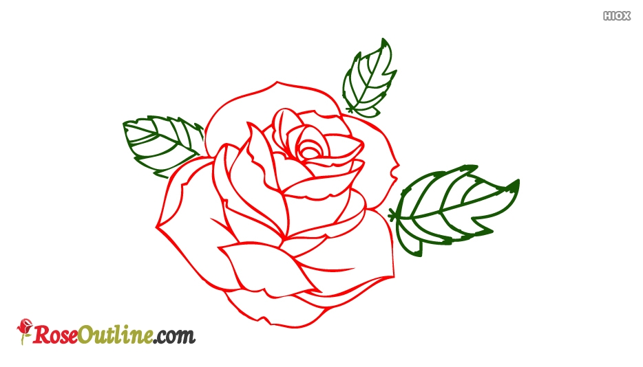 Beautiful and simple rose outline drawings jpg