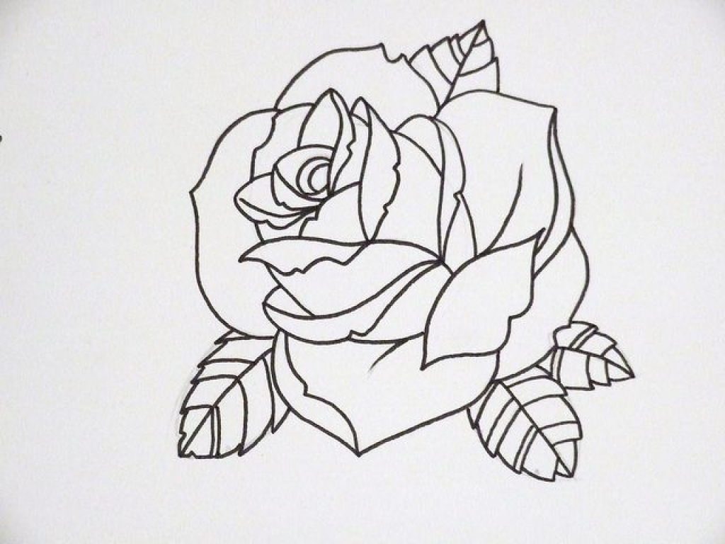 Ideas about rose outline on simple jpg