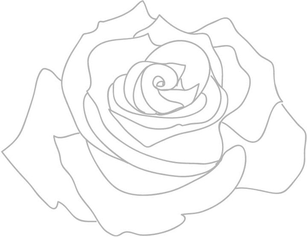 Rose outline free vector in adobe illustrator ai jpg