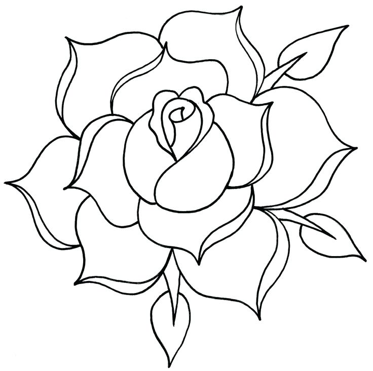 Simple rose outline tattoo drawing roses jpg