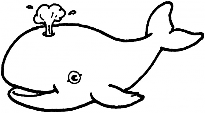 Whale outline whale cliparts free download clip art jpg