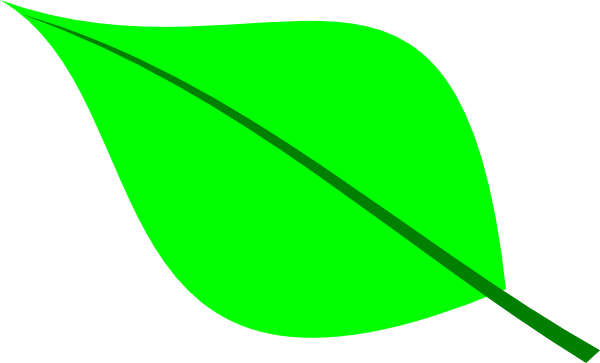 Green plant leaves encode clipart to base png