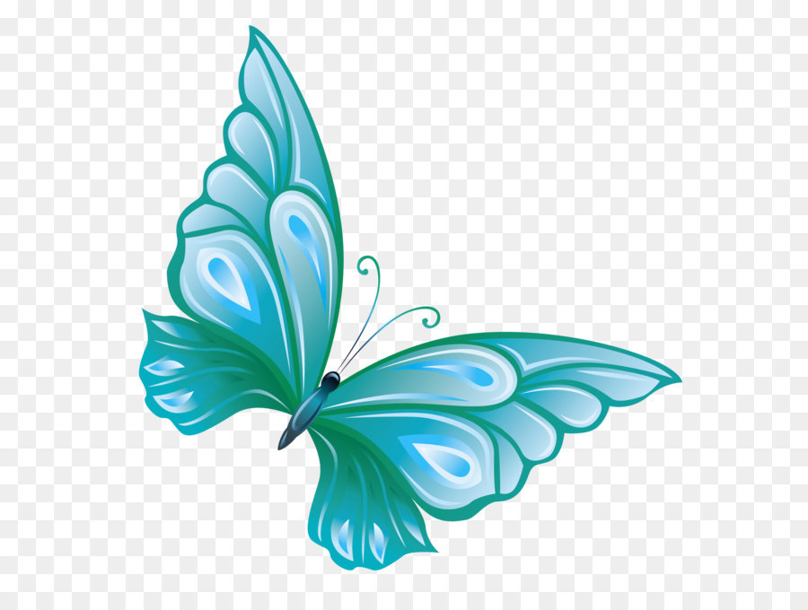 butterfly transparent Butterfly clip art transparent blue clipart jpg