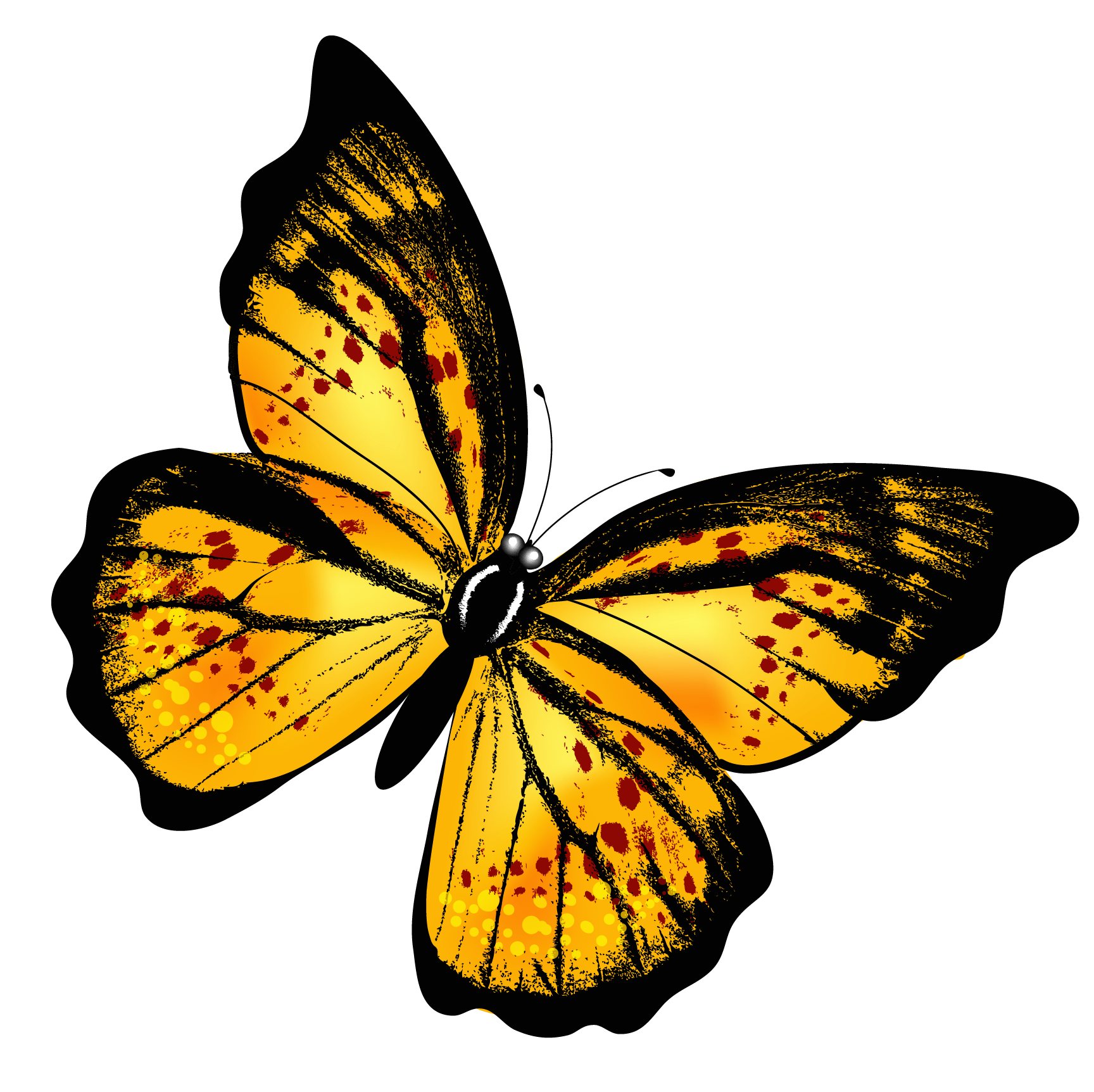 butterfly transparent Yellow transparent butterfly clipart picture gallery png