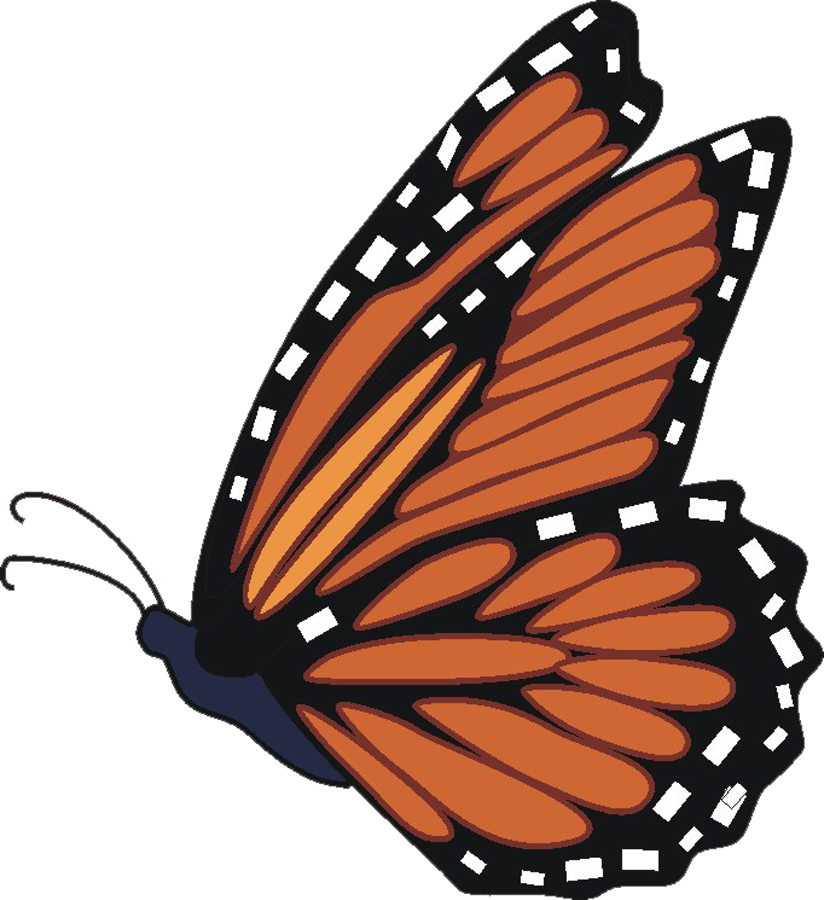 butterfly transparent Free butterfly images download clip art on png 2