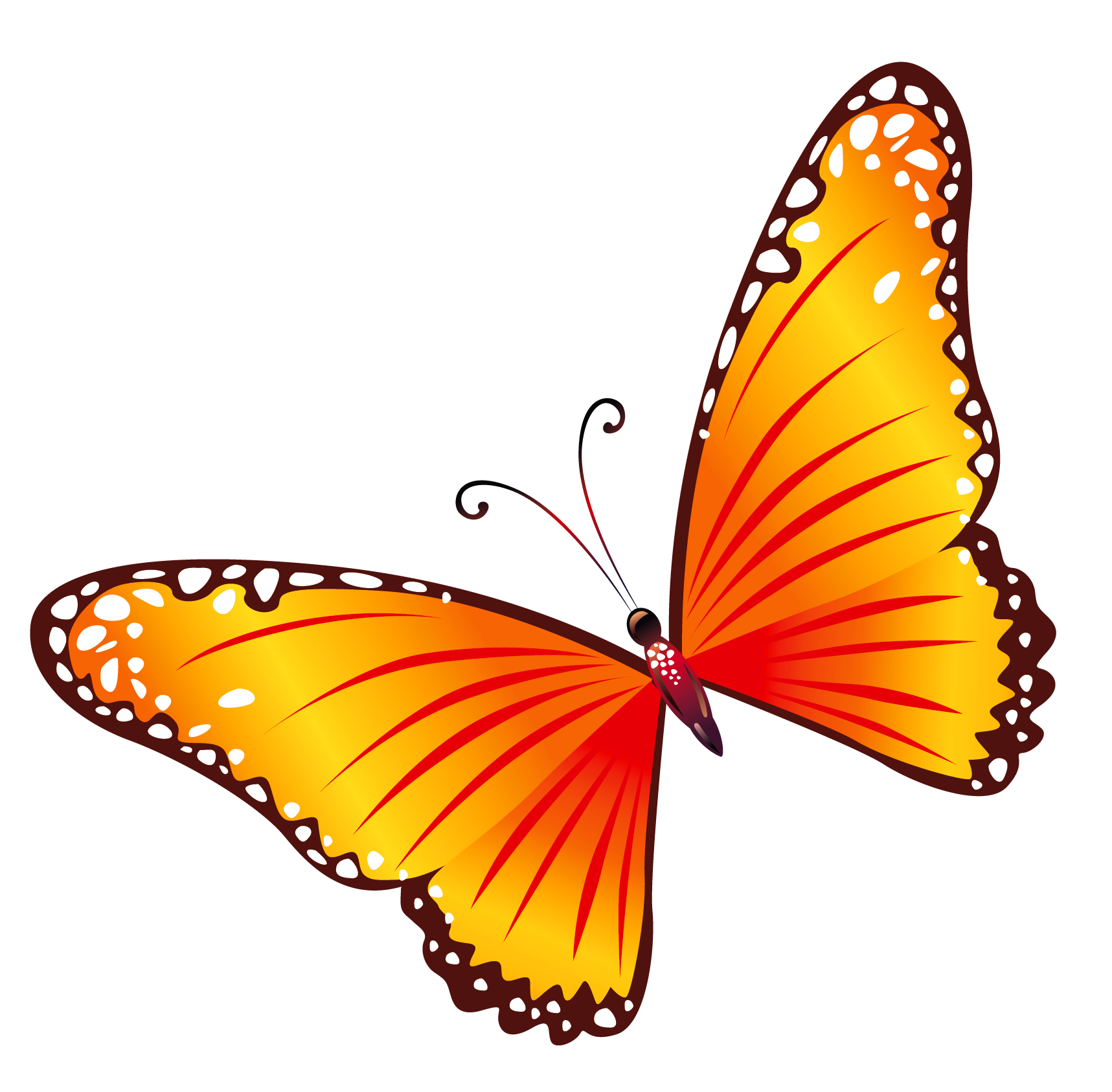 butterfly transparent Transparent orange butterfly clipart gallery yopriceville png