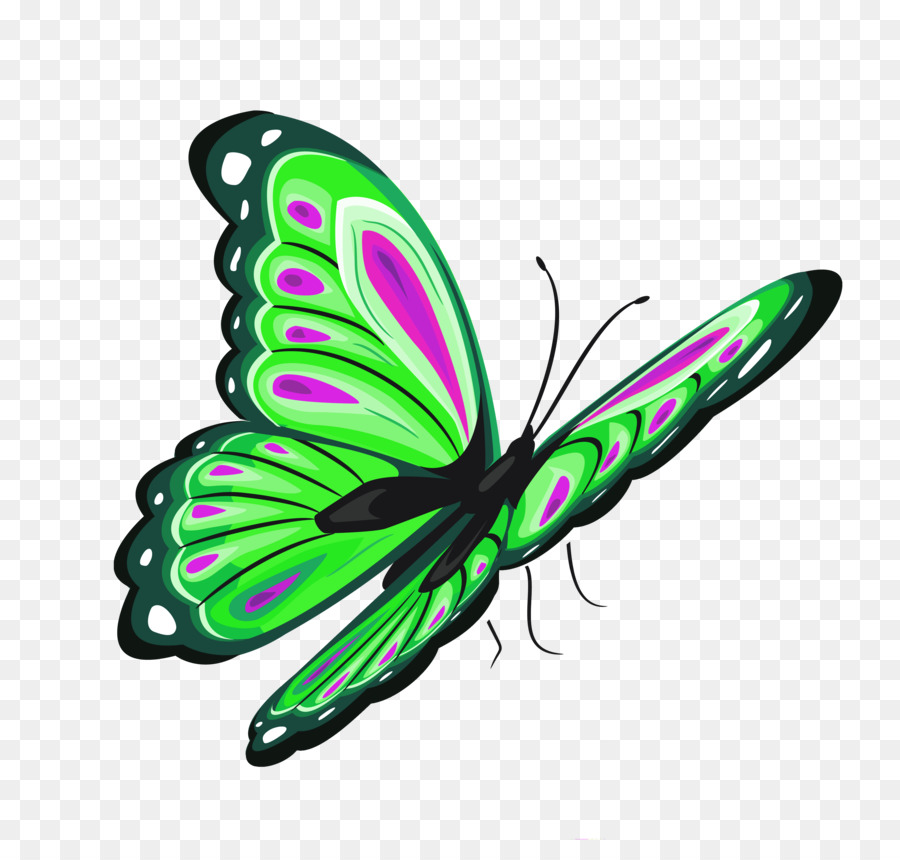 butterfly transparent Butterfly clip art green clipart download 4 jpg