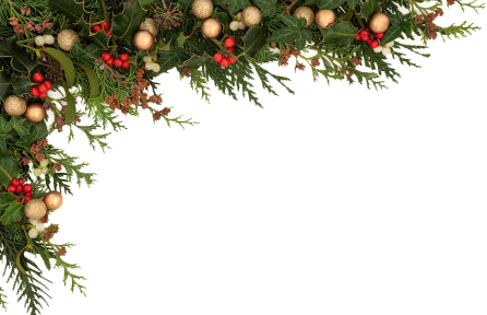 Christmas border 1 opusglow concept spa png