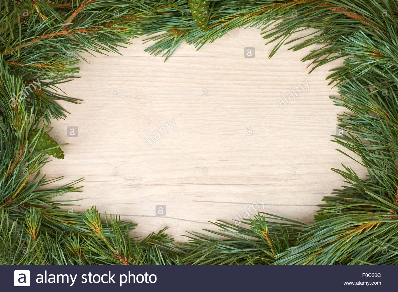 Traditional pine tree christmas border decoration on a wood stock jpg