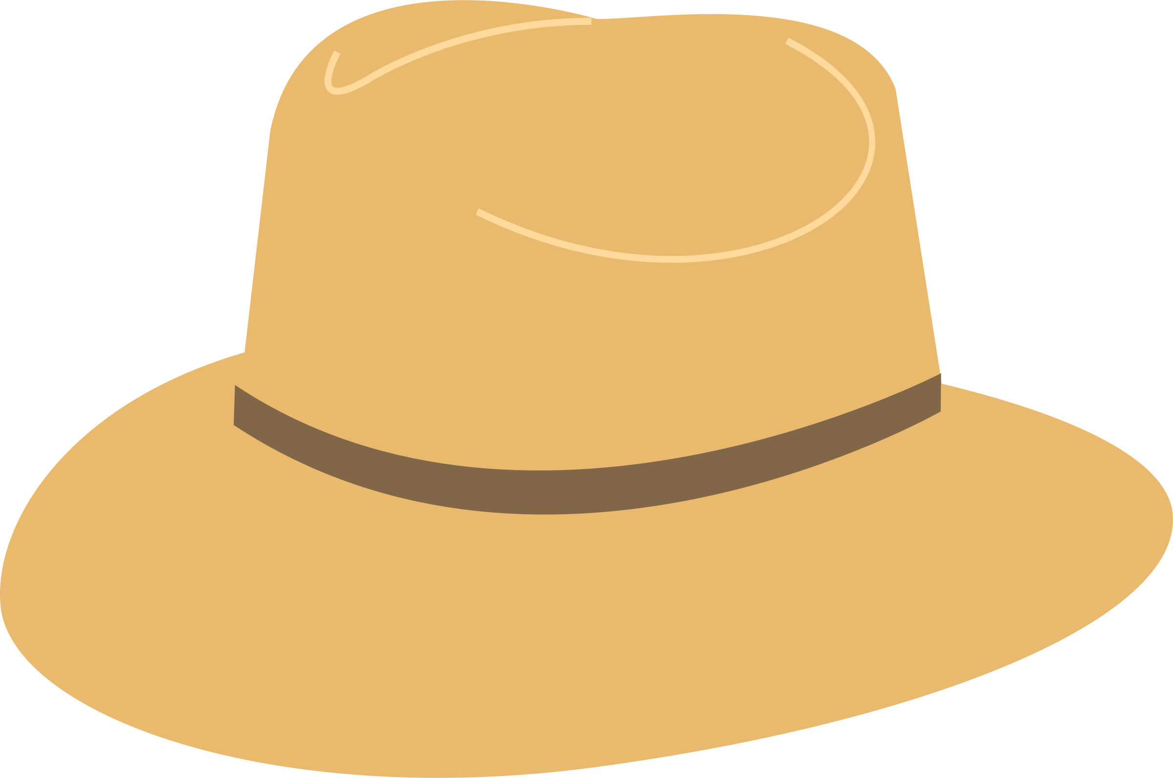 cowboy hat Sun hat graphic black and white stock transparent rr collections png