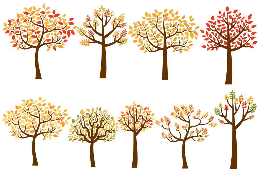 Yellow and red fall trees clip art set autumn tree clipart jpg