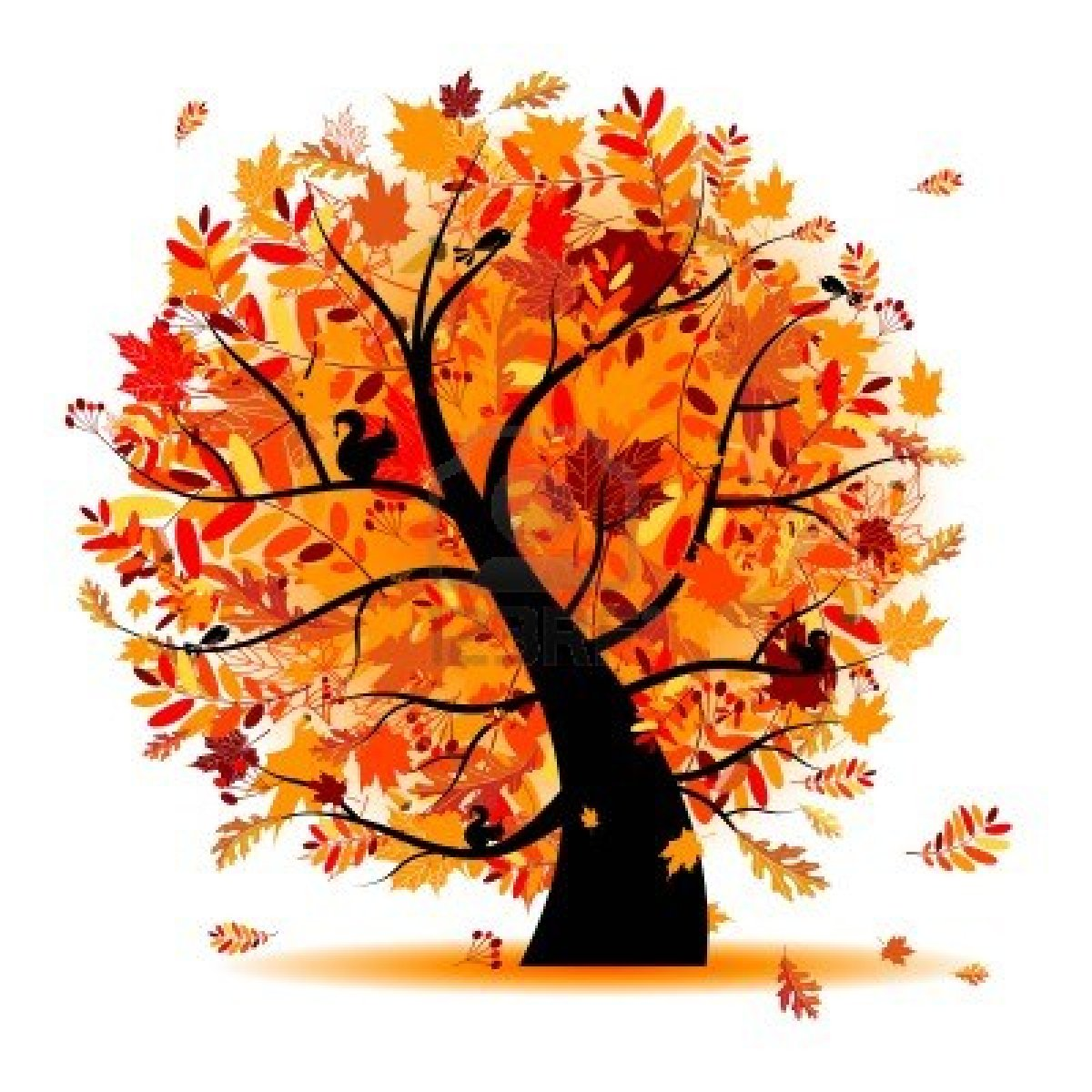 fall tree Fall from a tree clipart collection jpg