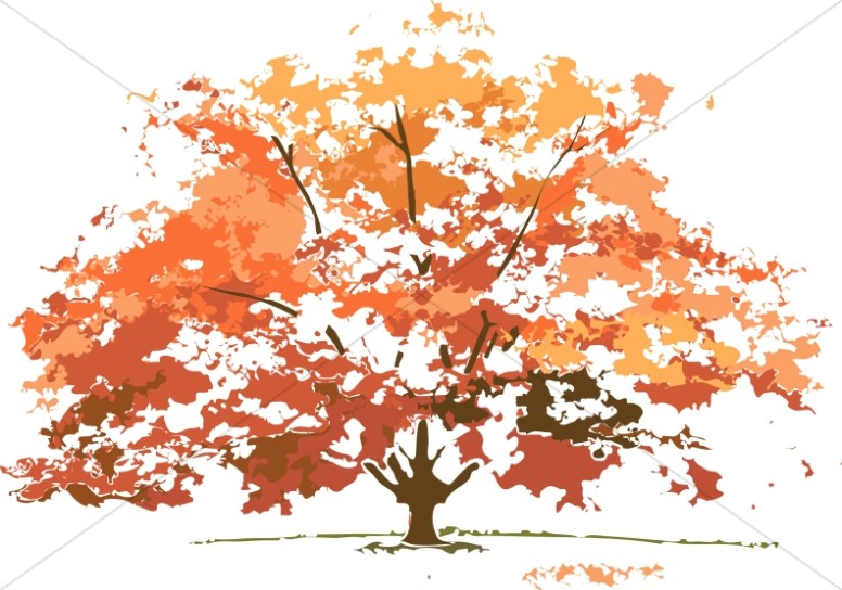 fall tree Fall colors maple tree nature clipart jpg