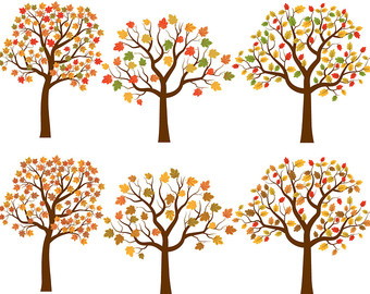fall tree Red maple tree clipart collection jpg