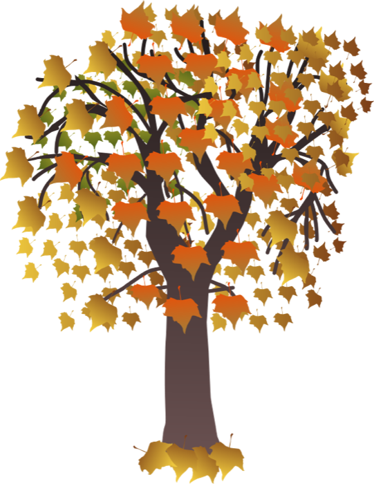 fall tree Free tree clipart animations of trees png