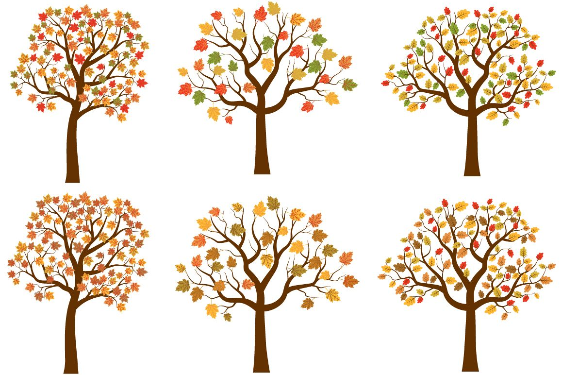 Autumn trees clipart set cute fall tree red yellow leaves jpg