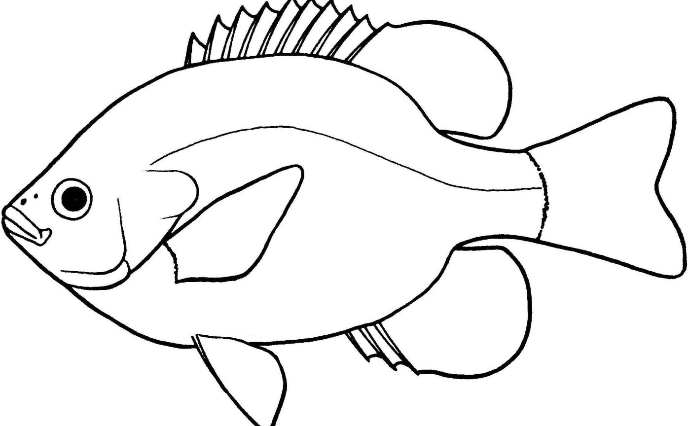 Lovely Of Fish Clipart Black And White Letter Master Outline 5 Jpeg Clipartix